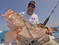 Reef fishing for red grouper